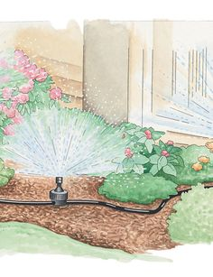 Landscape and Garden Sprinkler System to help go green