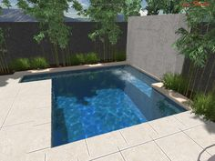 Google Image Result for http://neptunepools.com.au/wp-content/uploads/2012/02/SPASA-Show-Special-Plunge-Pool_006.jpg