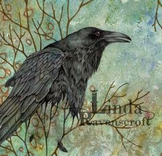 VANISHING SERIES - NEVER MORE - RAVEN