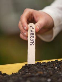 Mini-Farm Window Box: Step-by-Step Guide >> http://www.hgtv.com/gardening/how-to-grow-a-mini-farm-in-a-window-box/index.html?soc=pinterest