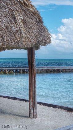 Starfish Island Belize Photo by Tonya Hatchel -- National Geographic Your Shot