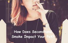 How Does Secondhand Smoke Impact Your Pet? #pet #health #smoking Pet Pet, Dog Cat, Animal Projects, Pet Health, Pet Care, Smoking, T Shirts For Women, Pets, Natural
