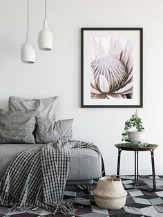 Protea Print Nature Prints Botanical Wall Art Photography
