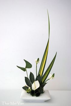 minimalist floral decor