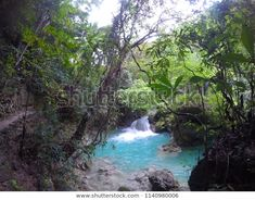 Find Blue River Waterfall Turquoise Waterfall Hidden stock images in HD and millions of other royalty-free stock photos, illustrations and vectors in the Shutterstock collection. Thousands of new, high-quality pictures added every day. Kawasan Falls, Travel Log, Philippines, Tourism, Waterfall, Travel Photography, Photo Editing, Beautiful Places, Scenery