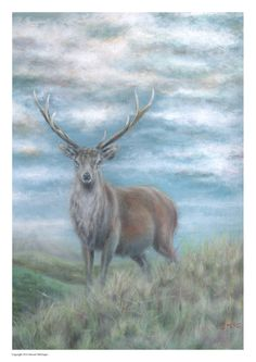 Painting of Stag animal print wall art animal art by Paintzstudio