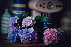 Coco Rose Diaries Coco Rose Diaries, Pip Studio, Purple Love, Peter Rabbit, Diy Crafts, Table Decorations, Crochet, Creative, Inspiration