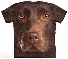Chocolate Lab - Adult Unisex T-Shirt - Wearing this Chocolate Lab face t-shirt is a great way to show your love of Labrador retrievers! Chocolate Labs, Labrador Retriever Chocolate, Chocolate Labradors, Big Chocolate, Labrador Retrievers, Retriever Puppies, Zebras, Mode Bizarre, T Shirt Chien