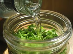 How to Treat Migraines with an Herbal Tincture at Home ~ A Recipe