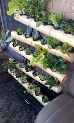 27 Interesting To Try Hydroponic Gardening For Beginners Design Ideas And Remodel. If you are looking for To Try Hydroponic Gardening For Beginners Design Ideas And Remodel, You come to the right pla. Jardim Vertical Diy, Vertical Garden Diy, Vertical Gardens, Vertical Farming, Vertical Garden Vegetables, Vertical Bar, Hydroponic Growing, Hydroponic Gardening, Organic Gardening