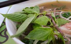 Pho at Nha Trang Vietnamese Restaurant, Hong Kong