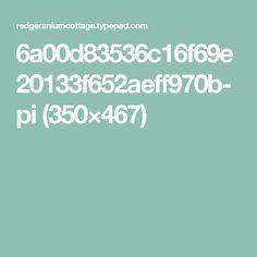 6a00d83536c16f69e20133f652aeff970b-pi (350×467)