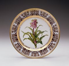 """Plate from the """"Service des liliacées"""""""