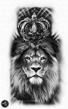 Lion Lion Tattoo tatuagem de leão drawing lion
