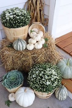 Imaginative Fall Porch Decorating Ideas to Make Yours Unforgettable Fall Porch I. - Imaginative Fall Porch Decorating Ideas to Make Yours Unforgettable Fall Porch Ideas - Fall Home Decor, Autumn Home, Fall Decor Outdoor, Modern Fall Decor, Casa Kaufmann, White Mums, White Porch, Farmhouse Front Porches, House With Porch