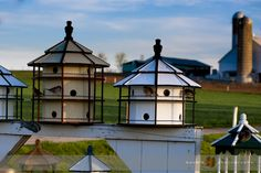 Birdhouses, West Earl Township, Lancaster County, PA