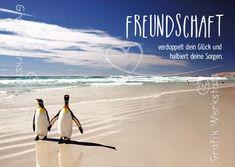 so siehts aus! => wer stimmt noch zu? Freundschaft - Postkarten - Grafik Werkstatt Bielefeld