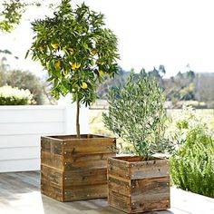 Rustic wood planters