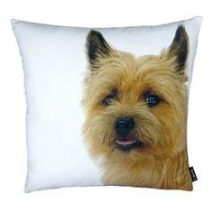 Terri Throw Pillow