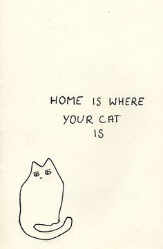 Home is where your cat is <3