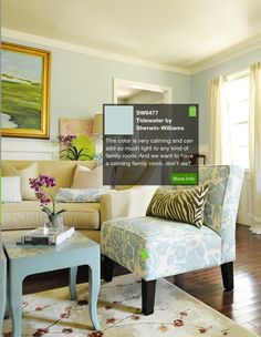 Tidewater by Sherwin-Williams paint