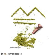 """Gefällt 1,827 Mal, 67 Kommentare - METALFORMS™ (@metalforms_aut) auf Instagram: """"Repost: @cannabiscapes ・・・ Woohoo for my first transatlantic collaboration, shout out to…"""" Cannabis, Moon Rock, Bud, Bowls, Mary, Hair Accessories, Smoke, My Favorite Things, Instagram"""