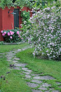 Peonies & Beauty Bush, via Flickr. Fab curving flagstone garden path thru a lovely garden!!!!