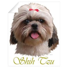 paintings of shih tzu - Google Search