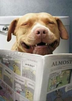 Funny papers!
