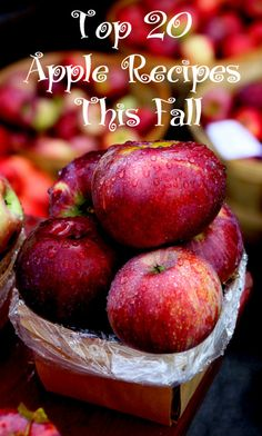 Top 20 Apple Recipes This Fall - cheese cake, apple pie filling, apple fritters, breads, muffins, cider, wassail - 20 favorites all in one place!