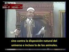 ¿Qué hacer con los homosexuales? Así lo explica este jeque tunecino. Vídeo. –…