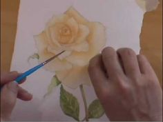 'How to Paint a Rose' is one of the most popular subjects in painting. In this video we see how to paint a beautiful peach rose with tips throughout on achie...