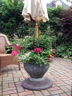 Potted Flowers and Patio Umbrella