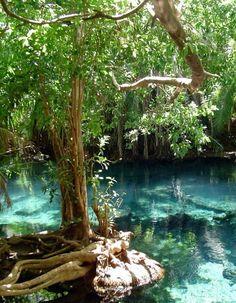 Beautiful pools at Chemka Hot Springs near Moshi, Tanzania (via connectingcontinents).