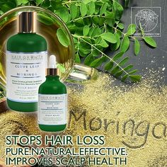 100% Natural Anti-Hair Loss Clove Leaf & Moringa Hair Growth Botanical Recovery System stops hair loss, improves oily hair and greasy scalp.💚 Treating hair loss with easy herbal remedies and things you can do at home will help prevent hair loss without the need for products that contain harmful chemicals or drug therapies that help in hair growth. Healthy hair, beautiful spirit! 💚 Effective Botanical Hair Recovery System💚 Eugenol, the active ingredient in Clove Leaf Essential Oil has been…
