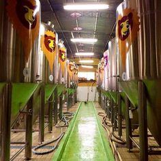Ribeirão Preto e a Rota da Cerveja