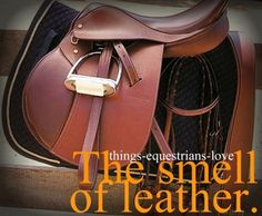 Things-equestrians-love.  www.thewarmbloodhorse.com