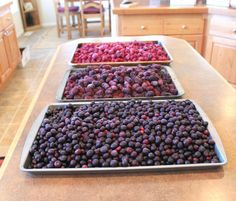 HOMEMADE JAM FROM FROZEN BERRIES ~ FROM JAMIE COOKS IT UP