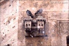 Bird Houses - SkyscraperCity