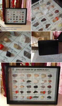 【楽天市場】【アートフレーム】ROCKS SPECIMEN Minerals 鉱石の標本風フレーム ロックコレクション【インテリアアート 子供部屋 プエブコ】《メール便不可》【RCP】【10P06May14】:plus gardens shop