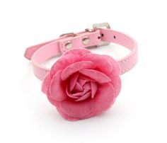 Dogs Kingdom Pink Sweet Rose Flower Dog Collar Pu Leather Pet Collar * You can find out more details at the link of the image. (This is an Amazon affiliate link)