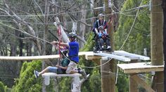 Camp Manager Tony Bellette helps student Nick Caligiuri (14yrs) across the high ropes course. PICTURE: JUSTIN WHITELOCK