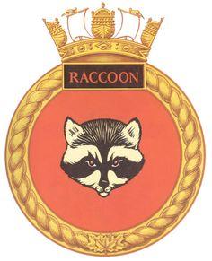 raccoon badge HMCS navy