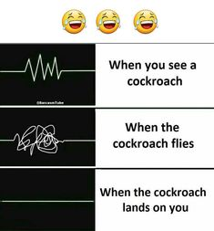 When You See cockroach..