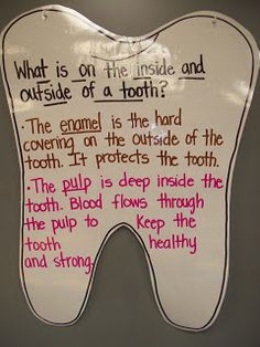 Mrs. Terhune's First Grade Site!: Dental Health