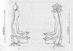 Para crecer, primero hay que afianzar la raíz