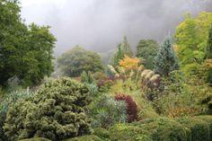 Beautiful Cloudehill Gardens in Olinda