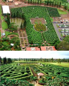 Pineapple Garden Maze (Hawaii)- The world's longest maze is at the Dole Plantation on Oahu, Hawai'i. Comprised of 11,400 tropical native plants and covering 3.11 miles, Dole has not only created the largest maze on earth; the company has taken it online where you can attempt to navigate the maze virtually.