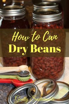 Learning how to can dry beans is a wonderful way to build your pantry with home-canned, nutritious food for the winter! Whether you grow your own or buy from the store, canning dry beans is easy! Pizza Sticks, Puerto Rico, Canning Food Preservation, Preserving Food, Canning Vegetables, Canned Food Storage, Cooking Dried Beans, Dehydrated Food, Canning Recipes