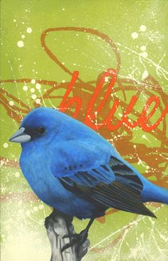 Art, painting, Blue bird, acrylic on masonite.  www.LanceBerka.com  www.facebook.com/LanceBerkaArt